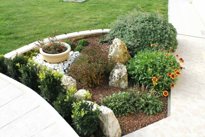 Comment décorer un jardin rocaille ? – ijardin